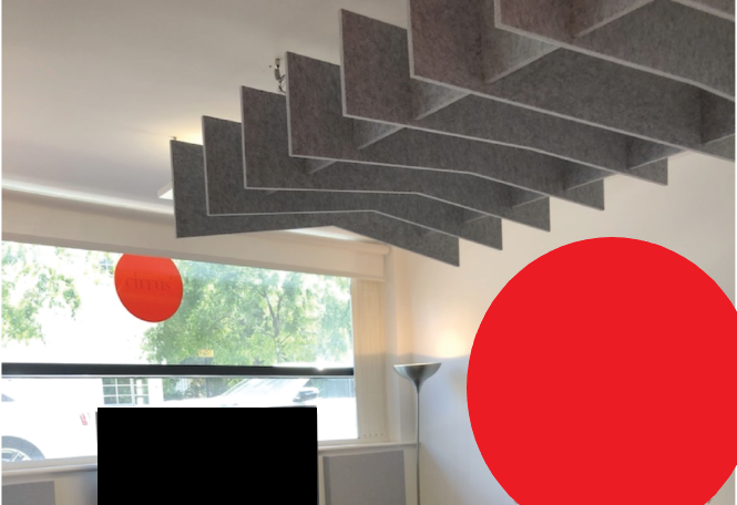 ceiling hung acoustic rafts